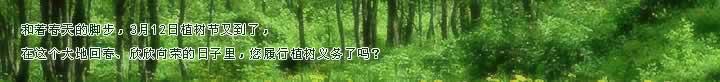 植 树 谣 - baoawu - baoawu的博客